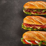 Three different types of gourmet sandwiches. With copy space on side. Cheese, pepperoni and roast beef slices Royalty Free Stock Photo
