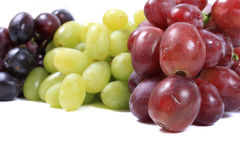 Three different types of grapes Royalty Free Stock Photography