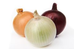 Three different types onions. On white background Stock Photography