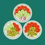 Three dishes with chopped vegetables. Pepper, tomatoes, radish and cucumber nicely laid out on plates. Concept healthy eating Royalty Free Stock Images