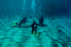 Three divers are training at the sea bottom. Three divers are sitting on the Red Sea bottom sand and training stock images