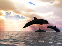 Three dolphin and fantastic sky Stock Photo