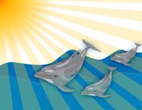 Three dolphins Royalty Free Stock Image