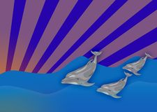 Three dolphins Stock Photos