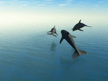 Three dolphins above the sea. 3d rendering.The rear view Royalty Free Stock Photo