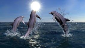 Three dolphins stock illustration