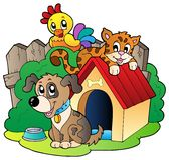Three domestic animals Royalty Free Stock Photography