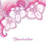 Three dotted moth Orchid or Phalaenopsis with decorative lace in shades of pink  on white background. Royalty Free Stock Image