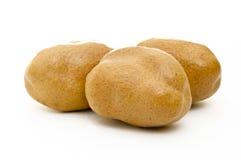 Three Doum Fruits Stock Images