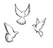 Three dove. Three flying dove. Stylization. Black and white stock illustration
