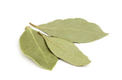 Three dried bay leaves close-up. Royalty Free Stock Photos