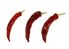 Three dried hot red chili peppers isolated. On white background Stock Images