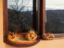 Three dried pumpkin for Halloween Royalty Free Stock Photography