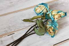 Three Dried Roses Stock Images