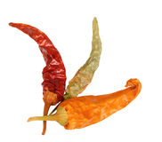 Three dry chilli-pepper Stock Image