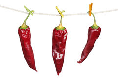 Three dry red chili peppers Stock Photos
