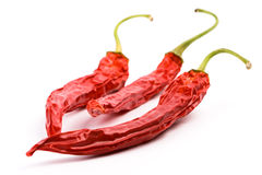Three dry red chilly peppers Royalty Free Stock Photography
