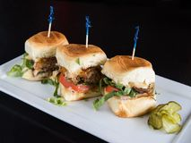 Three Duck Sliders on White plate stock images