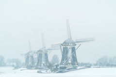 Three Dutch windmills during snowfall Royalty Free Stock Images