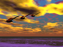 Three Eagles. Flying in the distance Stock Image