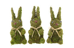 Three Easter bunnies Stock Photography
