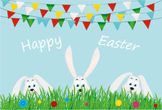 Three Easter bunnies are sitting in the grass with flowers.  Flags Royalty Free Stock Photos