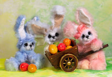 Three Easter bunny rabbit Royalty Free Stock Image