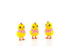 Three Easter Chicks Royalty Free Stock Image