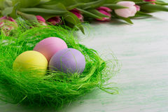 Three Easter eaggs in green nest Royalty Free Stock Photo