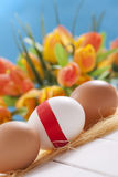 Three easter eggs. On flower background stock image