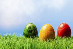Three easter eggs in grass, blue background Stock Image