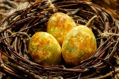 Three Easter eggs lie in a black nest of branches. Eggs are realistically colored and look like eggs of a dragon or dinosaur royalty free stock photos