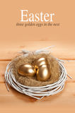 Three Easter eggs in the nest Stock Photos