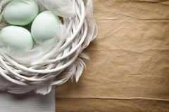 Three Easter eggs in the nest and blank paper sheet Royalty Free Stock Image