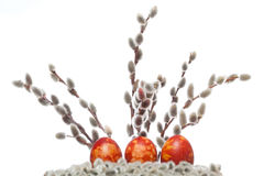 Three easter eggs with pussy willow Stock Photography