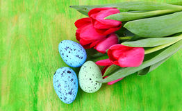 Three easter eggs with red tulips Royalty Free Stock Photo