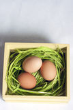 Three Easter eggs in wood crate Royalty Free Stock Images