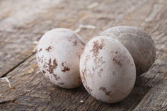 Three easter eggs Stock Photo