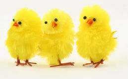 Three easter toy chickens Stock Photos