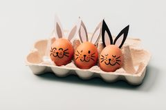 Three egg-bunnies standing in an egg carton. Easter egg. Traditional Christian holiday Royalty Free Stock Photo