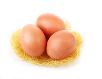 Three egg in grassy nest isolated on white Stock Images