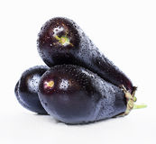 Three eggplants. With water drops on them shot on white background Royalty Free Stock Photography