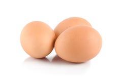 Three eggs Stock Image