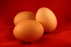 Three Eggs royalty free stock images