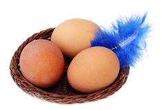 Three eggs in a basket and feather. Three eggs in a basket and a feather isolate Royalty Free Stock Photo