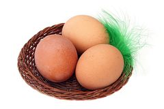 Three eggs in a basket and feather. Three eggs in a basket and a feather isolate Stock Photos