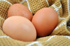 Three Eggs on Cloth Royalty Free Stock Photography