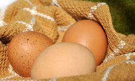 Three Eggs on Cloth Royalty Free Stock Image
