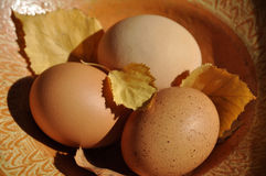 Three Eggs on Cloth Stock Images