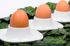 A series of three eggs and egg cups on a green background Stock Image